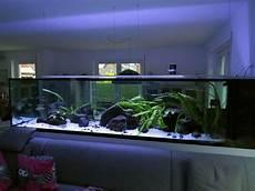 aquarium als raumtrenner 2000l malawi r 228 uber 302x86x70 seite 6 aquarium forum