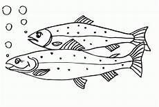 Ausmalbilder Zum Ausmalen Fische Ausmalbild Fische Kinderbilder