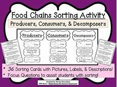 plants as producers worksheets 13617 food chains sorting activity about producers consumers decomposer ccss sorting