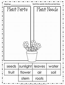 science plants worksheets for kindergarten 13582 slide3 jpg 816 215 1 056 pixels kindergarten science science lessons