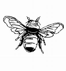 Malvorlagen Insekten Jelent Insekten 00225 Gratis Malvorlage In Insekten Tiere Ausmalen