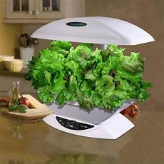 Indoor Hydroponic System How To Grow Hydroponic Plants