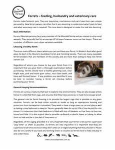 ferret care sheet ferret care sheets the unusual pet vets