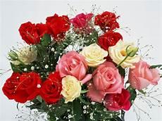 Kumpulan Gambar Bunga Romantis I You Animasi