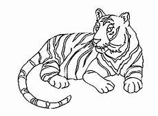 tigers to color for children tigers coloring pages