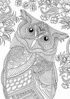 pin by heidi engler on coloring mandala coloring animal