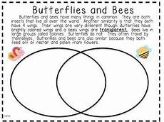 image result for 2nd grade compare and contrast worksheets reading writing tutoring