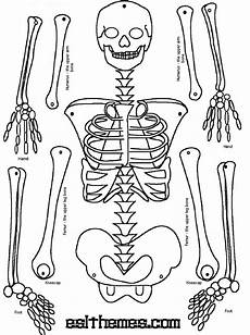 skeleton puzzle printable print it pinterest