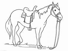 trojan coloring pages free coloring library