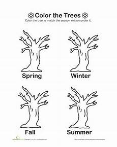 seasons maths worksheets 14825 17 images about tree unit on corks trees and cut and paste