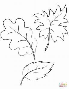 fall autumn leaves coloring page free printable coloring