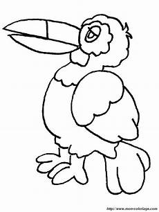 animals of mexico coloring pages 17091 ausmalbilder v 246 gel bild tukan
