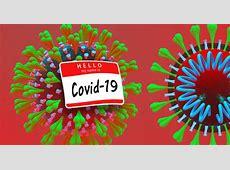 how not to get the coronavirus