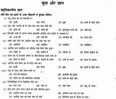hindi grammar worksheets for class 6 ncert exle worksheet solving