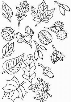Ausmalbilder Herbst Schwierig 2487 Best Ausmalbilder Images On Drawing
