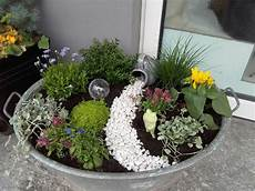 plant image result for zinc tray image plant result