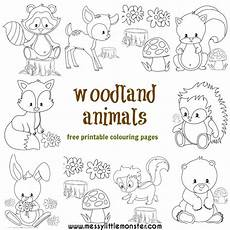 baby woodland animals coloring pages 17514 woodland animal colouring pages