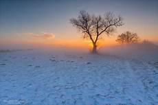 b ilder wintermorgen forum f 252 r naturfotografen