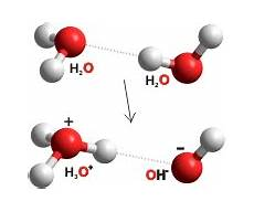 water ionization the ionic product kw of water and ph