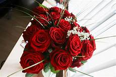 Roses Free Stock Photo Picjumbo