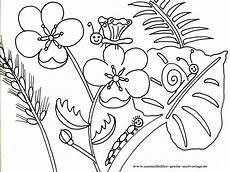 Ausmalbilder Einhorn Blumen Gratis Ausmalbilder Ausmalbilder F R Kinder Malvorlagen