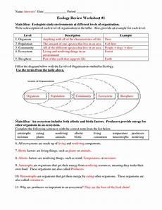 worksheet ecological pyramid worksheet grass fedjp