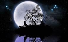Moon Wolf Wallpaper Hd