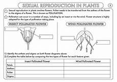 worksheets on plants reproduction 13599 parts of flower pollination and fertilization worksheet answers best flower site