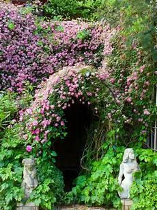 Garden Climbing Plants And Flowers
