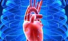 Mengenal Lebih Jauh Penyakit Jantung 171 Bisnis Kecil Modal