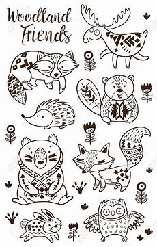woodland animals coloring pages 17187 stock vector animal coloring pages how to draw woodland animals