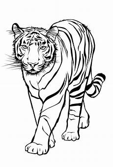 Malvorlagen Zum Ausdrucken Tiger Ausmalbilder Malvorlagen Tiger Kostenlos Zum Ausdrucken