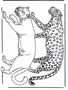 Ausmalbilder Erwachsene Leopard Leopard Images For Coloring Home