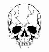 Cartoon Skull Collection Royalty Free Vector Image