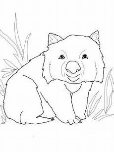 Malvorlagen Zum Ausdrucken Wombat 8 Best Wombat Storytime Images On Australian