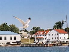 Seagull Apartments Ks by Kenosha Wi Seagull In Flight Kenosha Harbor