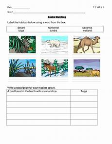 plants habitat worksheets for grade 2 13565 habitat matching worksheets differentiated year 2 key stage 1 science teaching resources