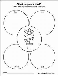 needs of plants worksheets kindergarten 13579 what plants need to grow worksheets for preschools