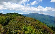 5 ideas for your great smoky mountain family vacation