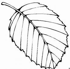 Gratis Malvorlagen Blatt Einzelnes Einfaches Blatt Ausmalbild Malvorlage Blumen