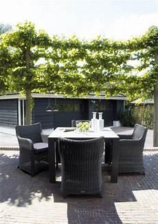 Rattan Sitzgruppe Im Garten Terrasse Sichtschutz Ideen Mit