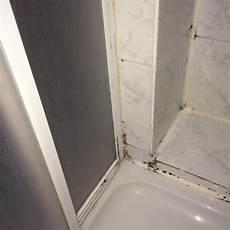 Schimmel In Der Dusche Wie Schlimm Ist Es