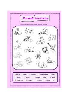 rainforest animals worksheets elementary 13860 forest animals esl worksheet by ameliajesus