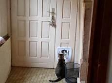 installer une chatière chati 232 re par graindecel