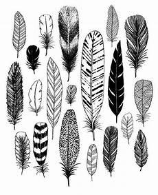 plume dessin facile 57543 images de plumes lilo hirondelles dessin plume dessin arbre et dessin