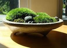 Zen Garten Deko - die besten 25 zen garten mini ideen auf