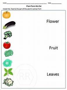 food sources grouping food the food pyramids worksheet
