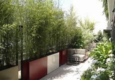Bambou Dans Jardiniere Pivoine Etc