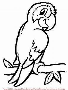 Ausmalbilder Tiere Papagei Papagei 036 Kostenlose Malvorlagen Und Ausmalbilder Auf