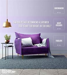 colorfully behr purple color categories